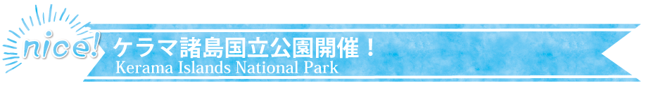 大人気エリア開催!慶良間諸島国立公園:1日コース・半日コース・慶良間諸島近海で本格ダイビングを楽しもう!慶良間諸島は沖縄の中でも透明度の高い海として有名です。